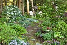 gardens & green living / Gardening and Hillside gardens