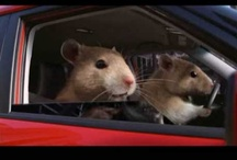 Creative Car Commercials / Car commercials have always been a favorite. There are some many great, creative ones out there that we can't show them all; but we have listed our faves!