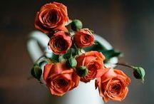 FlowerLOVE / by Mary Elisabeth Jackson