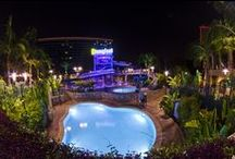 Disneyland Resorts & Hotels / by Nicolle Bryant