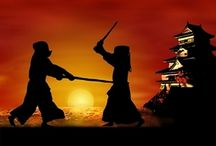 Feudal Japan: Samurai, Ninja & More. / by Carl Cunningham