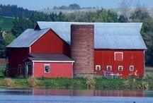 Beautiful Barns  / by Diane Landry