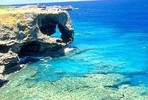 Okinawa vacation wish list... I <3 U Malina!