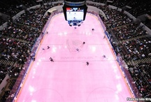 Pink in the Rink / by Norfolk Admirals