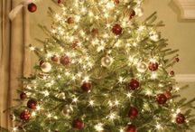 Christmas Trees / Christmas Cheer  / by Cassady Caldwell