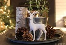 Holidays at Home / No matter the season, we have great holiday decorating ideas for your favorite place ~ home!
