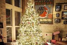 Holidays / by Jane Carney