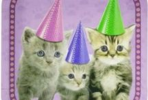 Kitten Party Ideas / We all love our pets, whether they're a kitten or a cat. This is why kitten and cat parties are highly popular themes for a birthday party. Here's a few kitten party ideas - including kitten party supplies - for your party.