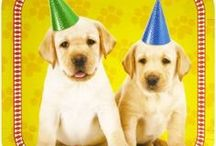 Puppy Party Ideas /  All kids love cute, cuddly puppies which is why a puppy birthday party is highly popular for both girls and boys. Plus, they're super easy to plan for! We hope these puppy party ideas and puppy party supplies help you with your party!
