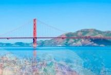 save me, san francisco / dedicated to my city by the bay / by Stephanie Howell