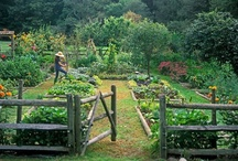 home spaces / dream farm garden / by Joia Hicks