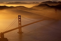 san francisco trip / the places we'll go :) / by Tiffany Luong