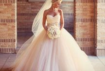 Wedding Dresses / the Bride's outfit / by Courtney McGaha