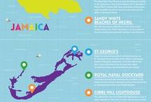 Travel Infographic / Travel Infographic