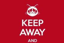 Keep Calm &..........