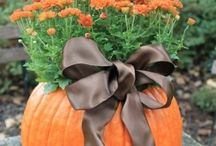 Fall Fun / All things about fall