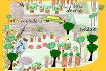 garden ,landscape design