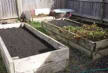 My Vegetable Gardening Tips / tip, tricks, ideas, suggestions, how to