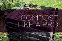 Compost Like a Pro / Composting is just as important for your soil as it is for the Earth. When you add compost to your garden you add healthy minerals that will let your fruits, veggies and other plants flourish. Plus, everything you compost is just more waste that is diverted from the landfills. Composting is easy and can be done in your yard, your kitchen, or even your apartment! We've collected some pins on ingredients, DIY projects and products all about composting!