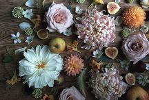 Flowers / by CJ