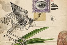 Graphic Art-Illustration-Posters