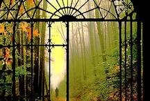 Puertas y ventanas hacia el cielo / by El jardín de Noah de Rocío P.