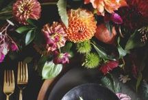 Thanksgiving / by Jonathan Adler