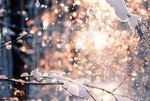 SNOW / by Lauri Creese