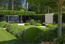 Garden / The great outdoors