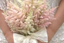 Astilbe Wedding Bouquet / Astilbe wedding bouquet soft pastel pink fluffy florals & lace bound bouquet. Created by Blush Rose Manchester wedding florist.