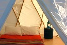 Camping Guidance / Camping hacks, camping games, campfire recipes, camping packing lists, recommended campsites and other ideas for a fun camp out.
