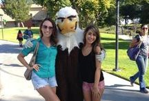 Concordia Blogs / This is the official Concordia University Irvine blog, where the voices of current students, alumni, faculty, and staff bloggers are featured. / by Concordia University Irvine