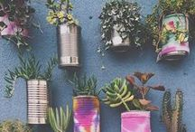 green fingers / gardening time