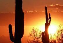 Sunsets / Crépuscules sublimes