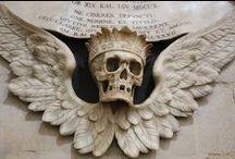 Skull & Bones / inspiration