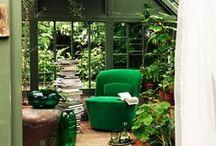 △ Plants & Garden △ / △ Everything around Garden and Plants △