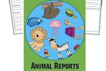 { Homeschool: Animals }