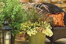 Summer Custom Designs / Container Gardening or 'potscaping' as it has come to be known, is officially a favourite among gardeners — providing inspiration for all seasons. Here are some of our favourite spring container creations.