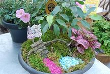 Ethereal Miniture Gardening / A unique twist to gardening! Step into the magical world of Fairy Gardening. It's easy to do and keeps things interesting with all the décor possibilities.