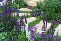 Lovely Landscape Inspiration / Are you planning a landscape or new garden? We have some great ideas for new curb appeal, landscape design, ponds. Learn how easy it can be to help create a beautiful, relaxing and enjoyable atmosphere.