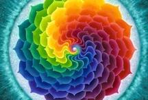 COLOR - Rainbow Colors