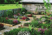 Home - Gardening & Country Life / by JamJar Design Shop