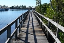 Gold Coast Parks / If you can't escape to the country, escape to your local park..click here for details http://walkingthegoldcoast.com/gold-coast-parks