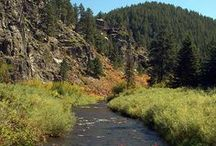Scenic Southwestern South Dakota / The Black Hills region has some of the most stunning scenery in the country