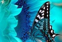 Blue... Peace