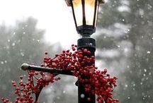 Winter/ Christmas