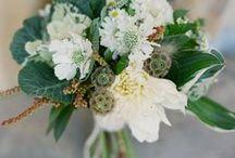 wedding 8.11.12 / by hillary taylor