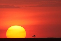 African Sunsets / Sunsets in Africa are nothing short of amazing!