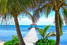 Beautiful Beaches / Ben jij benieuwd naar de mooiste stranden ter wereld? In dit album laat HolidayCheck ze allemaal zien! Wil jij ook pinnen op dit board? Laat dan een reactie achter!   #Beaches, #Stranden, #Beach, #Strand #Beautiful #Oceaan #HolidayChecknl #HolidayCheck.nl #Zomer  -------------------------------> Bekijk, beoordeel en boek op http://www.holidaycheck.nl/ / by HolidayCheck.nl