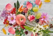 Flowers ✿ / Kwiaty